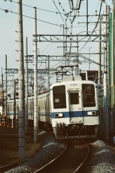 47060014.jpg
