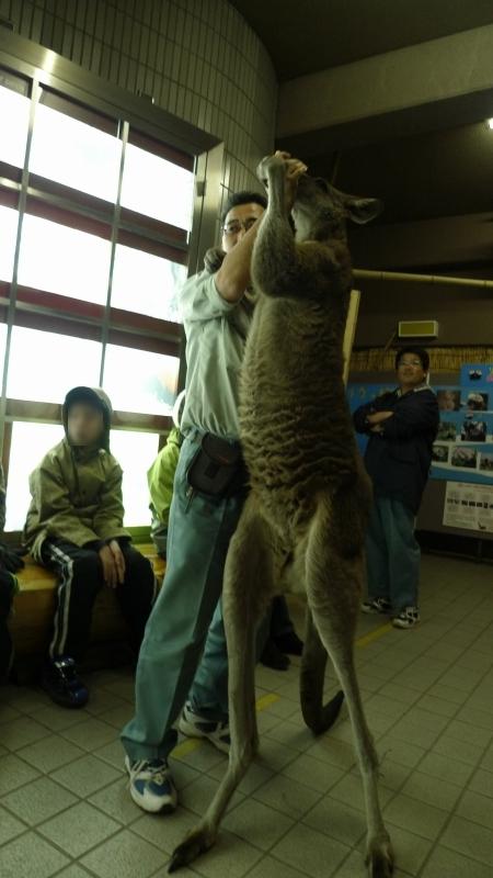 kanuragawa2011_20111217174827.jpg