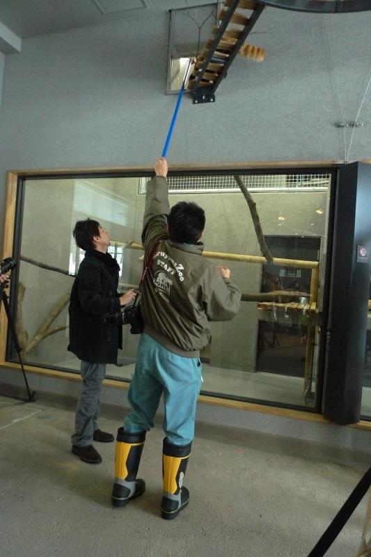 maruyamazoo20121208panda002.jpg