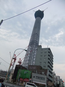 スカイタワーが!