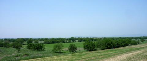 20100521-4.jpg