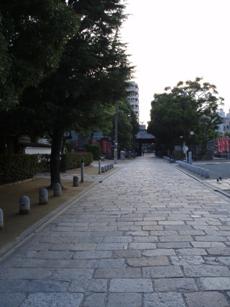 20100730_01_01.jpg