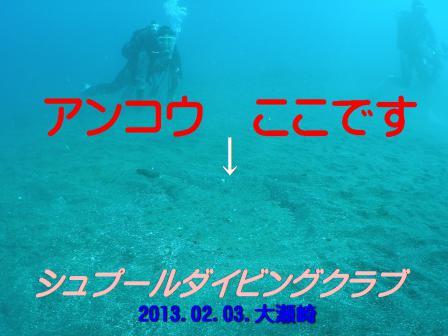 annkou001ss_20130203_oosezaki.jpg