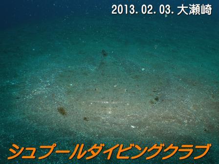 annkou003ss_20130203_oosezaki.jpg