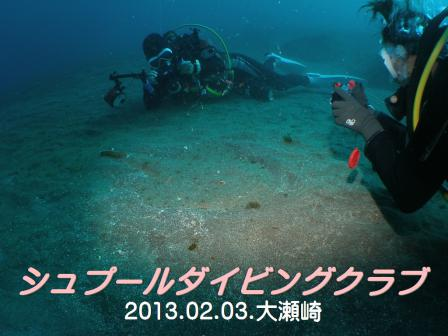 annkou006ss_20130203_oosezaki.jpg