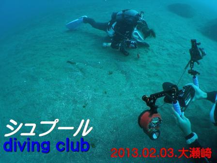 annkou007ss_20130203_oosezaki.jpg