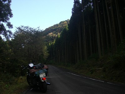 s-14:26多良岳横断林道
