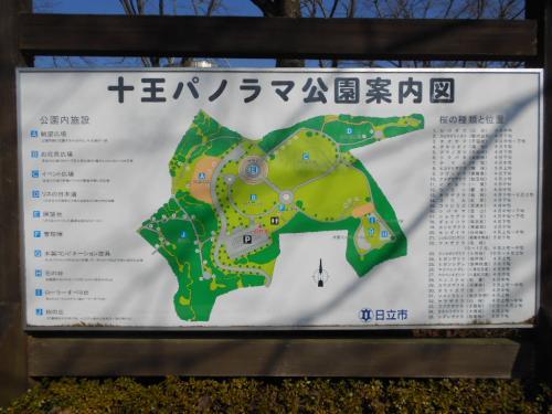 ⑰十王パノラマ公園