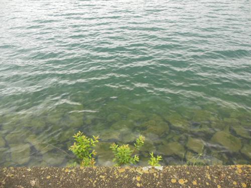 5中禅寺湖5