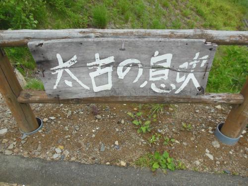 ⑤樹海ライン1