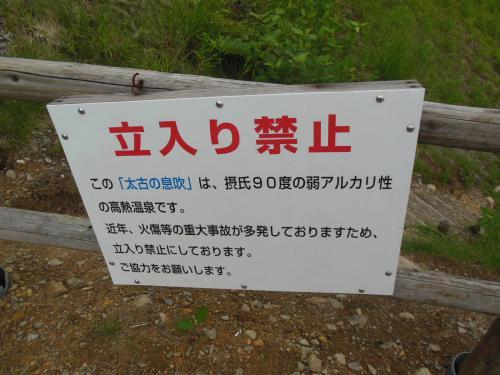 ⑤樹海ライン2