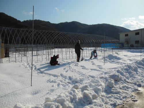 3雪遊び1