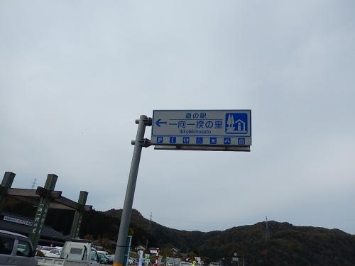 DSCN7728.jpg