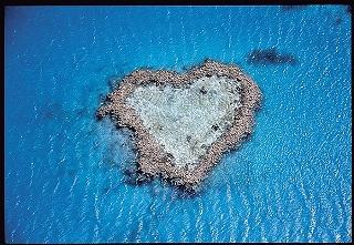 low_Heart_Reef.jpg