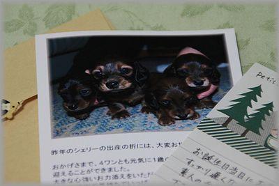 2010.12.30 お手紙