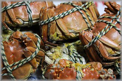 2011.1.1上海蟹