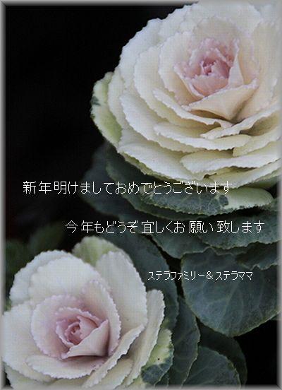 2011.1.1 お年始のご挨拶