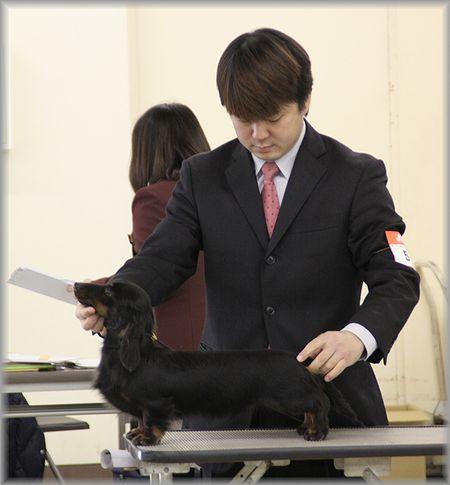 2011.1.9 ベンちゃん2
