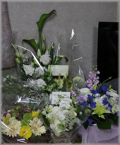 2011.1.15 お花達