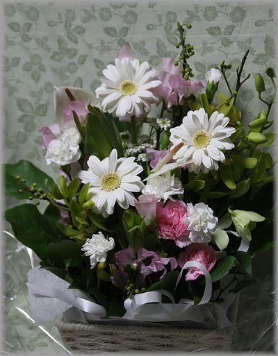 2011.1.26 京さんから