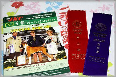2011.1.31 ティーちゃん1