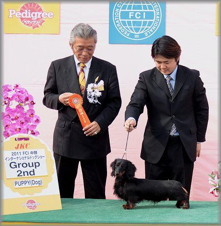 2011.3.6 ベンちゃん パピークラス3戦目3