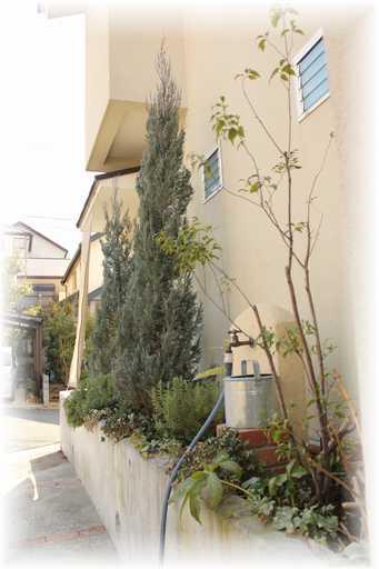 20130220植木屋