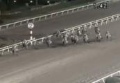 2013 大井12R グランディオーソ 10