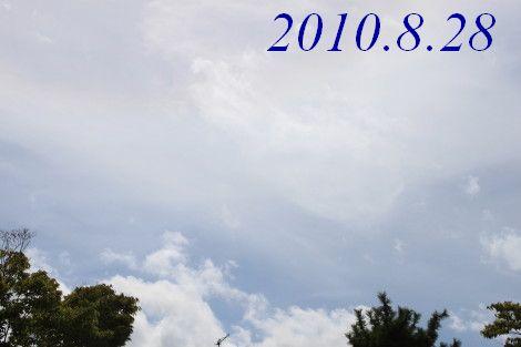 IMG_8058.jpg