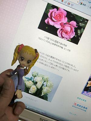 薔薇レモネード 001