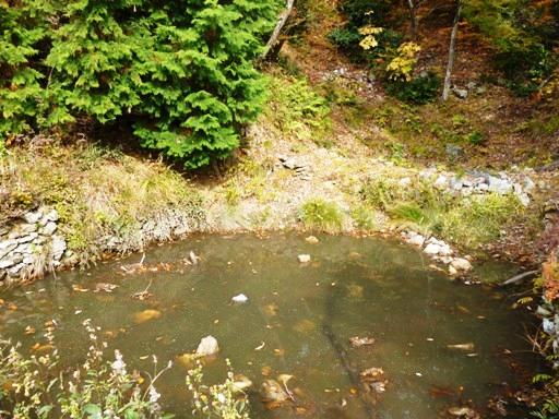 小谷城馬洗池
