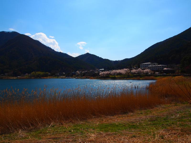 河口湖 1
