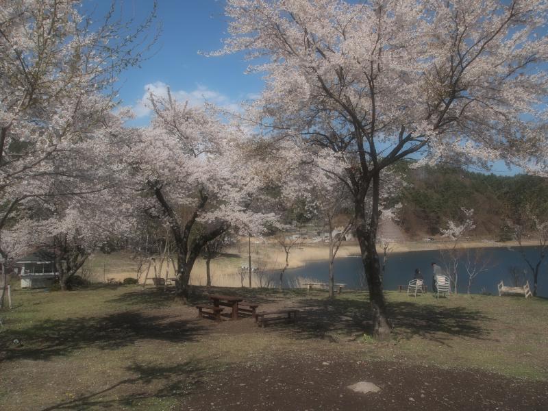 河口湖 4