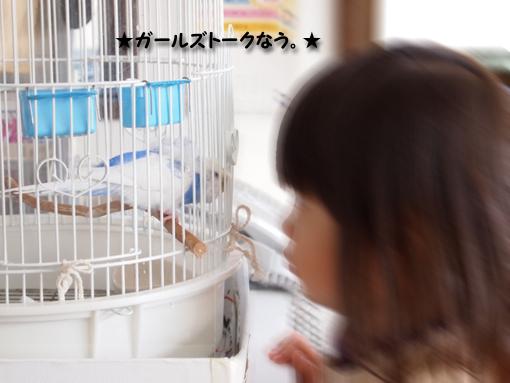 アタシはプリキュアミントが好きよ♪ イロちゃんは?