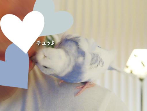 ぱぱぁ~♪