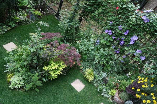 庭を見下ろして