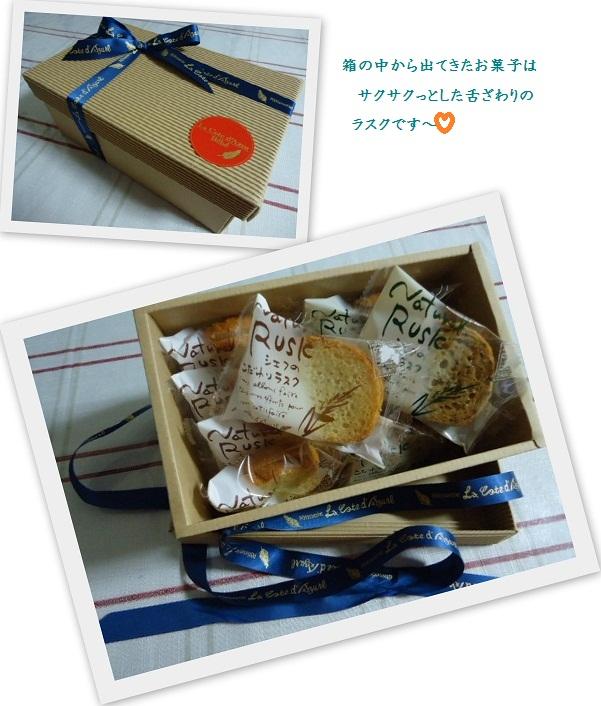 201203261919.jpg