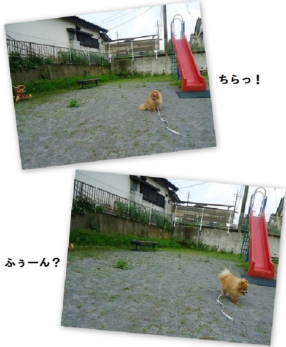 公園で遊ぶ20120520
