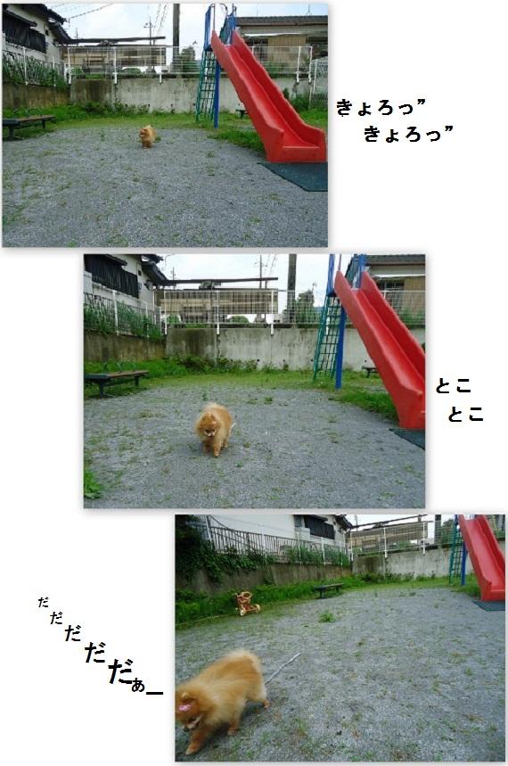 ひとりぼっちの公園20120520