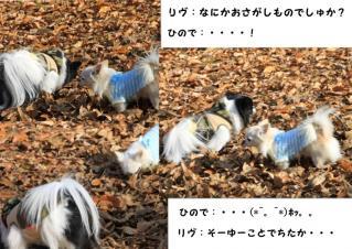 ren_hinode.jpg