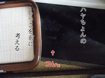 20140110_2.jpg