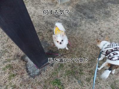 20140131_1.jpg