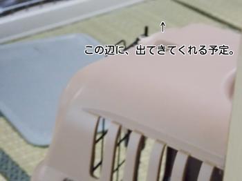 20140204_2.jpg