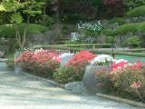 浄見寺の庭