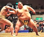 20120603sumo田邉