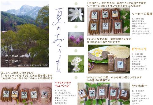 2012-summer-gift-A.jpg