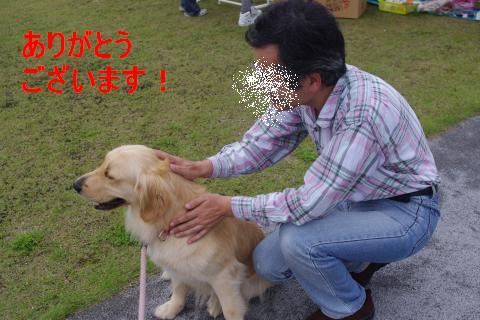 IMGP1296_convert_20110606223601.jpg