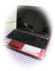 P1000322-111.jpg