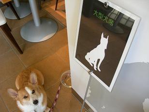犬吉の日② (2)