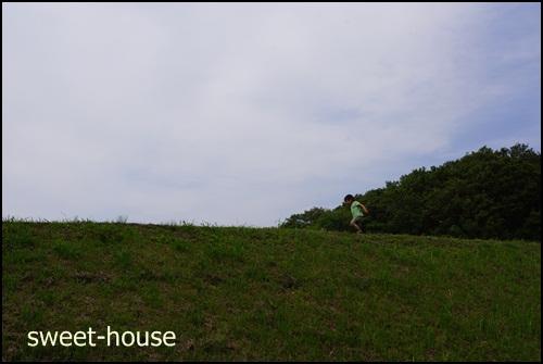 DSC05471 ほが 草原